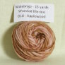 Malabrigo Worsted Merino Samples Yarn - 018 Applewood