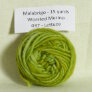 Malabrigo Worsted Merino Samples Yarn - 037 Lettuce