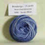 Malabrigo Worsted Merino Samples Yarn - 099 Stone Blue