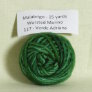 Malabrigo Worsted Merino Samples Yarn - 117 Verde Adriana