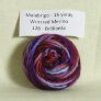Malabrigo Worsted Merino Samples - 126 Brilliante