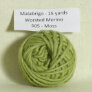 Malabrigo Worsted Merino Samples - 505 Moss