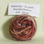 Malabrigo Worsted Merino Samples - 634 Oeste