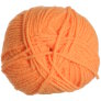 Plymouth Encore Worsted - 0481 Neon Mango (Discontinued)