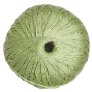 Nazli Gelin Garden 5 Yarn - 500-65 Light Sage