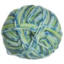 Plymouth Encore Worsted Colorspun Yarn - 7514 Blue/Green