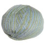 Classic Elite Silky Alpaca Lace Hand Paint - 2402 Frosted Meadow