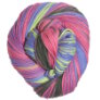 Cascade Avalon Multis Yarn - 311 Bright Mix (Discontinued)