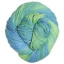 Cascade Avalon Multis Yarn - 314 Blue & Green