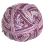 Cascade North Shore Prints Yarn - 507 Princess