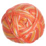 Cascade North Shore Prints Yarn - 509 Citrus