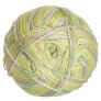 Cascade North Shore Prints Yarn - 510 Savannah