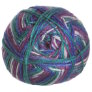 Cascade North Shore Prints Yarn - 502 Gemstones
