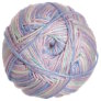 Cascade North Shore Prints Yarn - 503 Fairytale