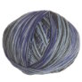Cascade Forest Hills Multis Yarn - 103 Denim