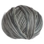 Cascade Forest Hills Multis Yarn - 107 Cloudy