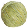 Rowan Tetra Cotton Yarn - 08 Garda