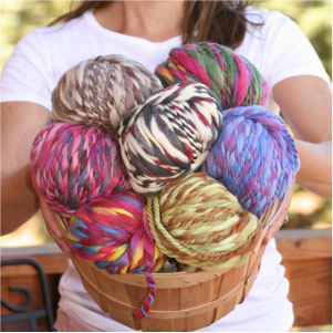 Jimmy Beans Wool Gift Certificates - $100 Gift Certificate