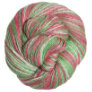 Cascade Sunseeker Multis Yarn - 118 Candy Cane