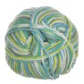 Plymouth Yarn Dreambaby DK Paintpot Yarn - 1410 Lime Aqua