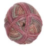 Lane Cervinia Forever Sock Yarn - 045