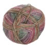 Lane Cervinia Forever Sock Yarn - 046