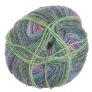 Lane Cervinia Forever Sock Yarn - 047