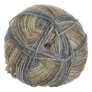 Lane Cervinia Forever Sock Yarn - 048