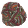 Lane Cervinia Forever Sock Yarn - 061