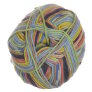 Lane Cervinia Forever Sock Yarn - 071