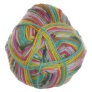 Lane Cervinia Forever Sock Yarn - 072