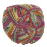 Lane Cervinia Forever Sock Yarn - 073