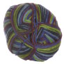 Lane Cervinia Forever Sock Yarn - 078