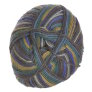 Lane Cervinia Forever Sock Yarn - 075