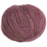 Berroco Colora Yarn - 4845 Cloves
