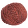 Berroco Colora Yarn - 4850