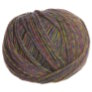 Berroco Colora Yarn - 4857