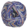 Schachenmayr Regia Design Line by Arne & Carlos - 50g Yarn - 3656 Moon Night Color