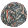 Schachenmayr Regia Design Line by Arne & Carlos - 50g Yarn - 3657 Summer Night Color