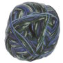 Schachenmayr Regia Design Line by Arne & Carlos - 50g Yarn - 3658 Winter Night Color