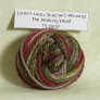 Lorna's Laces Shepherd Worsted Samples Yarn - '15 October - The Walking Dead