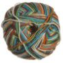 Wisdom Yarns Pix Yarn