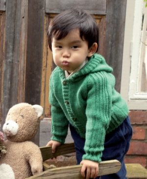 Rowan Baby Merino Silk Dk Hazel (infant sizes) Kit - Baby and Kids Pullovers
