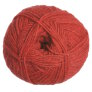 Zealana Cozi Yarn - C05 Current