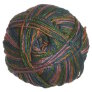 Crystal Palace Panda Silk Yarn - 5216 Tropical Parrot