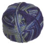 Crystal Palace Panda Silk Yarn - 5217 Citrus Berry