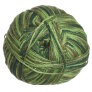 Crystal Palace Panda Silk Yarn - 5219 Jungle Calm