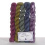 Lorna's Laces String Quintet Packs Yarn - Saxophone