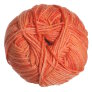 Debbie Bliss Baby Cashmerino Tonals Yarn - 06 Flower Pot