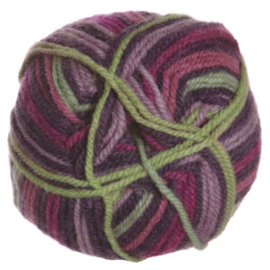 Plymouth Yarn Encore Worsted Colorspun Yarn - 7914 Concord Sunset